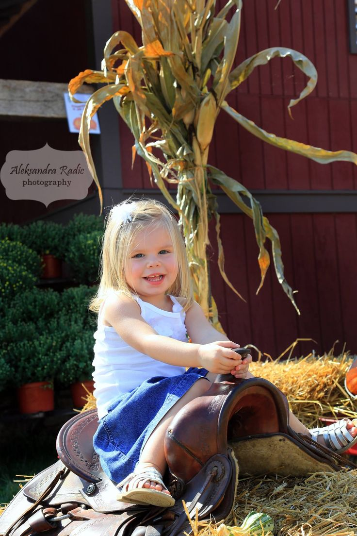 Fall kids photography #fallphotography #kidsphotography #pumpkin #siblingphotography Aleksandra Radic Photography www.aradicphotography.com Northern Va Photographer  571.297.5121