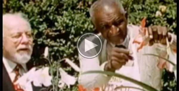Who Knew These Things About George Washington Carver — and They Have Nothing to Do with Peanuts Video by Hidden Colors