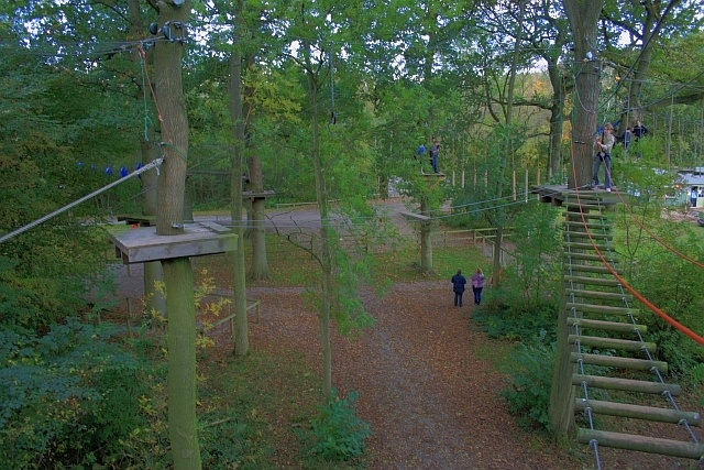 12 Best Images About Aerial Ropes Course And Low Ropes