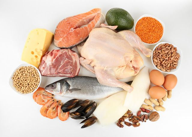 weight loss by eating more protein