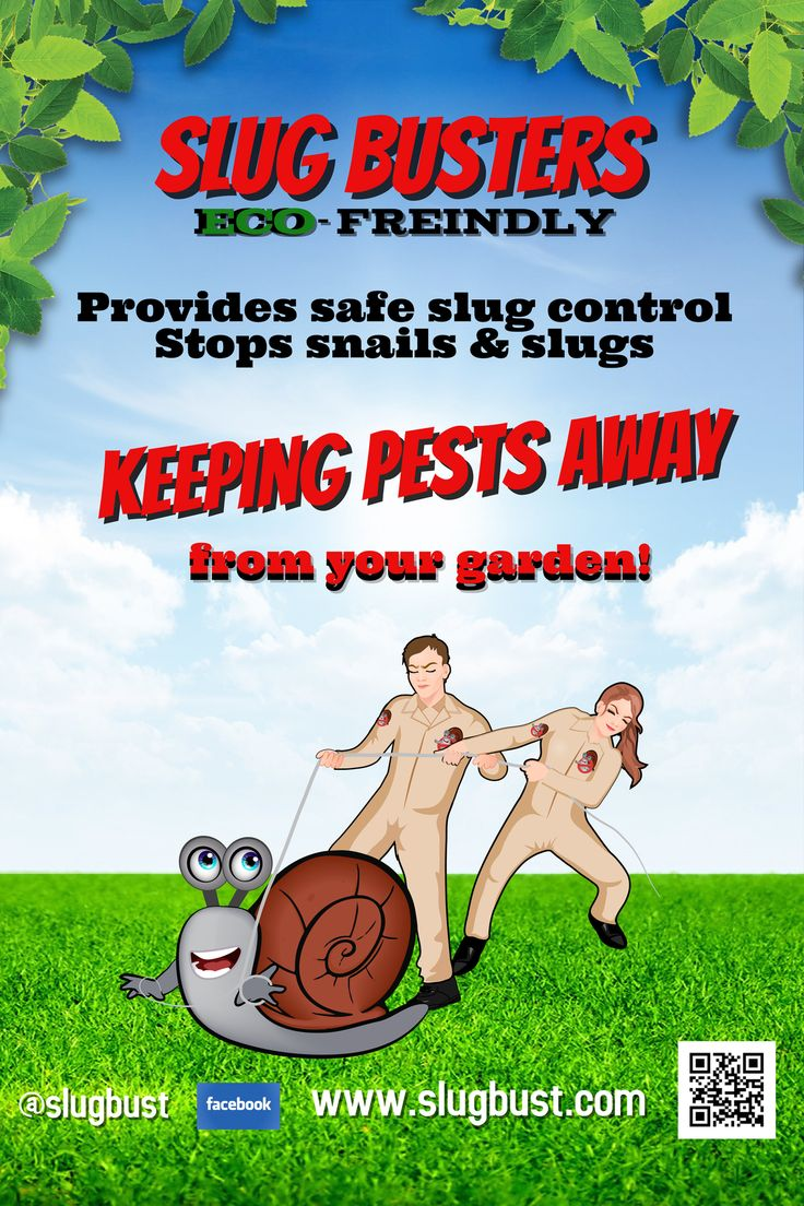 Eco-friendly Safe to use #SlugBusters to keep snails & slugs away from your growing vegetation. #SlugBust. #pltjon #planetjon