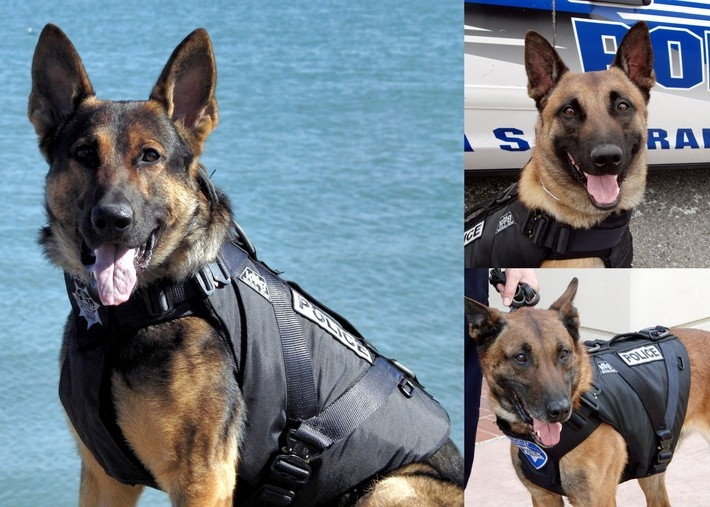 Cover Your Helps Protect Police Dogs While They Are Are Work Protecting Us.