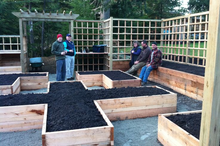 raised beds and trellises