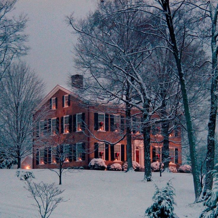 """"""" Christmas in the country """""""