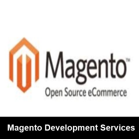Magento Development Services  http://www.ayushvedainformatics.com/ecommerce-solutions/magento-customization/  We are specialist in magento web development, and we are provides multiple mageto service.  #magentodevelopment