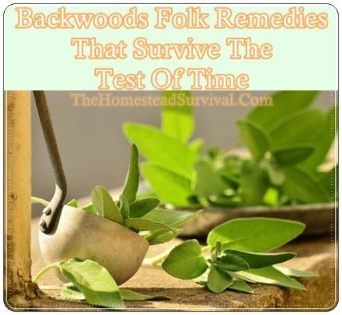 Backwoods Folk Remedies That Survive The Test Of Time