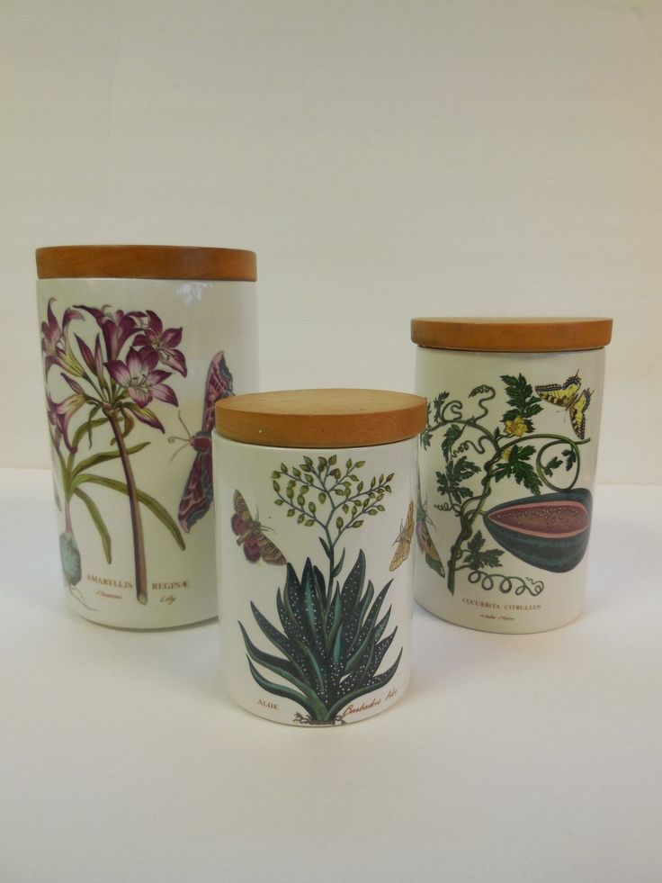 3pc Vintage Portmeirion Pottery Botanic Garden Canister Set Older Mark Aloe | eBay