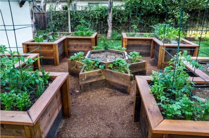 The Homestead Survival Beautiful Raised Herb Garden What To Grow Raised Bed Herb Garden Raised Herb Garden Small Vegetable Gardens
