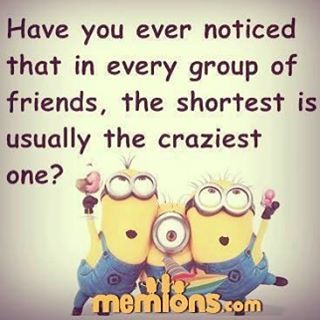 Tag your crazy friends ❤️ #minions #quote #group #of #friends #shortest #the #craziest #friendship #true #lol