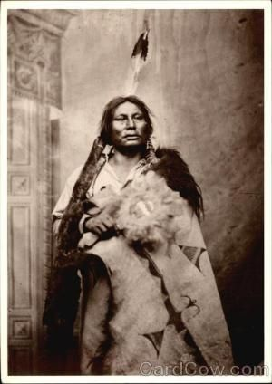 Gall, Sitting Bull's lieutenant and adopted brother, was credited along with Crazy Horse for the defeat of Custer at the Battle of Little Bighorn. He routed Major Reno, then led hundreds of warriors for a frontal attack against Custer by vera