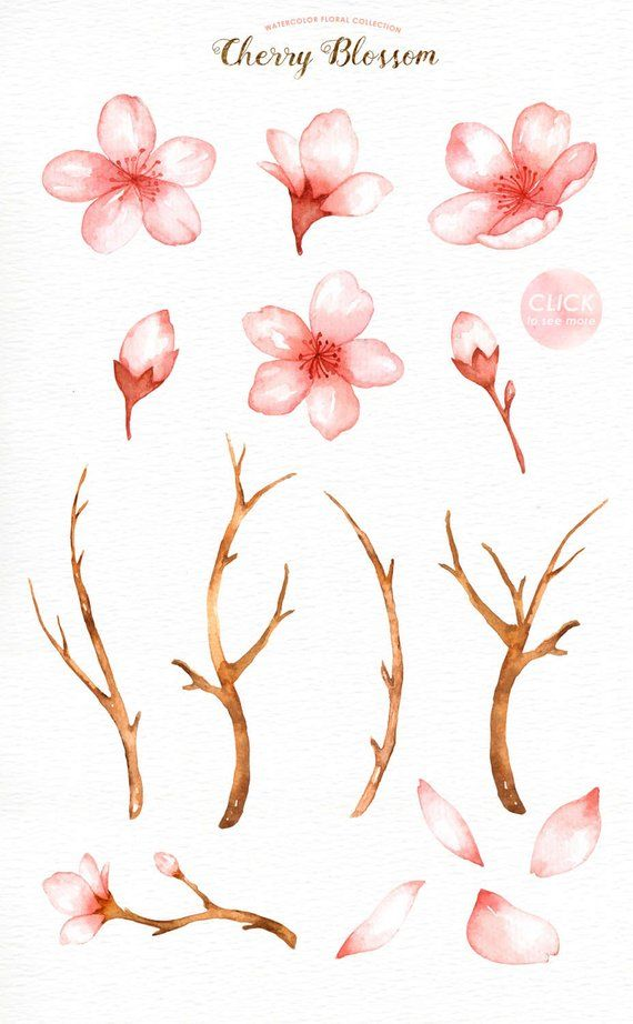 Cherry Blossom Watercolor Clip Art, Spring Flower,Flowers Clip Art, Sakura, Wedding Invitation, DIY,
