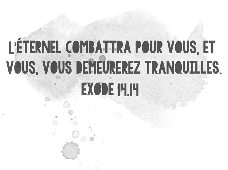 exode 14.14