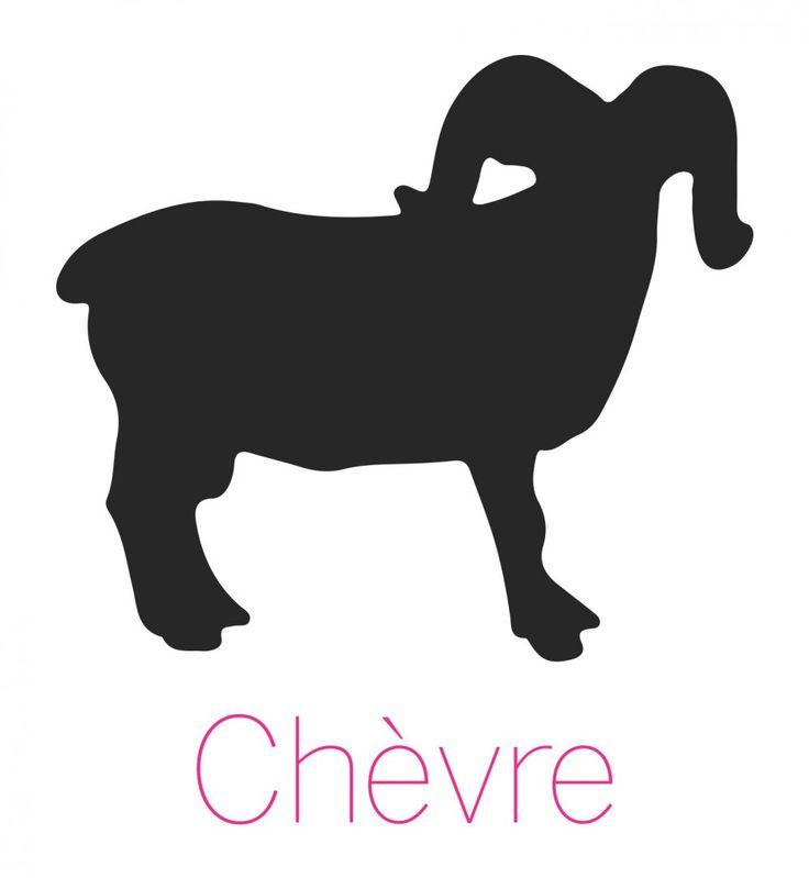 Signe astrologique chinois de la Chèvre: caractère et personnalité