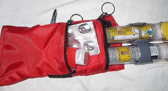 Epi pen or Auviq case pouch carrier insulated by racheltreasures, $24.95