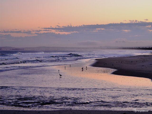 Sunrise at Milnerton Lagoon (c) Florescence - July 2015