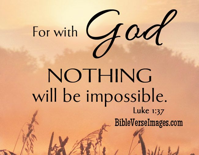 Best Bible Quotes 39 Best Bible Verses Images On Pinterest  Bible Quotes Biblical .