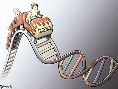 Science roller coaster coursework