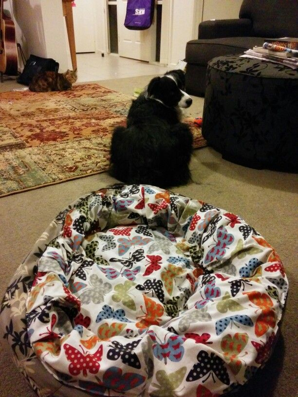 New tough but pretty material cover for the dogs bed. Material from Lincraft.