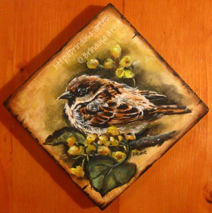 Brîndușa Art House sparrow - painted plaque, acrylics on wood. 5.5 x 5.5 inches (14 x 14 cm). Vrabia de casă - tablou pictat pe lemn, în culori acrilice. 14 x 14 cm. #flowers #flori #bird #pasare #sparrow #acrylics #acrilice #woodpainting #picturapelemn #BrindusaArt  #art #handmade #unicat