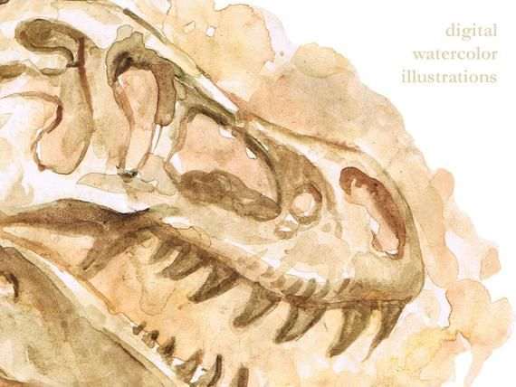 Black And White Dinosaur Fossil Clipart, HD Png Download - kindpng