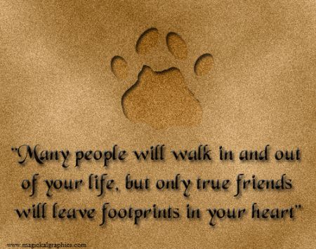"""""""A friend is the man who knows all about you and still likes you.""""~Elbert Hubbard"""