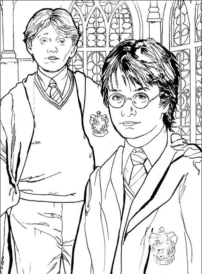 Coloriages A Imprimer Harry Potter In 2021 Harry Potter Colors Harry Potter Coloring Pages Harry Potter Coloring Book