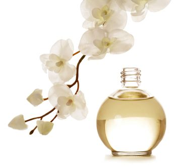 Different Types of Perfume Products with Essential Oils: