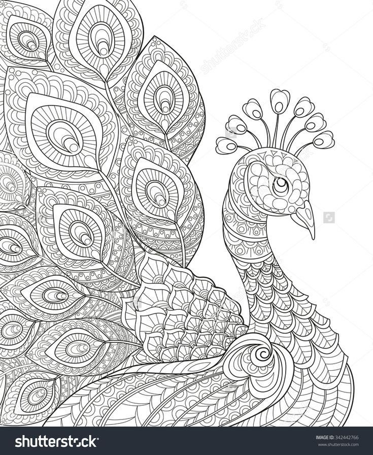 Adult Antistress Coloring Page Black And White Hand Drawn Doodle For Book Stock Vector Illustration 342442766 Shutterstock