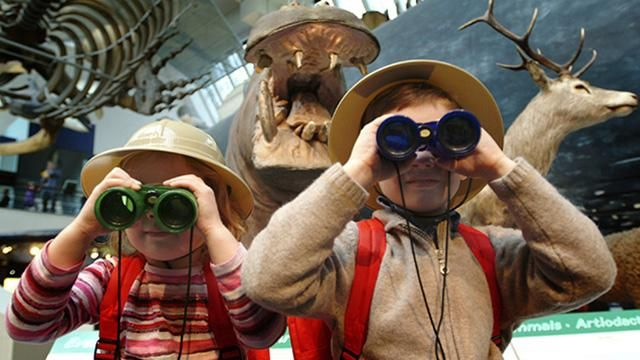 The Natural History Museum is a free museum in London, find opening times, visit the shop, meet the dinosaurs and find hotels near the museum in Kensington.