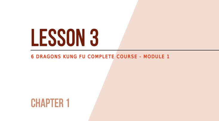 Lesson 3 – My first training session How a 6DKF's training session is structured Generally, a 6 Dragons Kung Fu training session is divided into 5 parts: Warm up (effort preparation for muscles, tendons, etc.) Basic training (middle-level intensity) Explosive training (high-level intensity) Endurance training (middle-level intensity) Cooldown (low-level intensity) Each of these parts is …