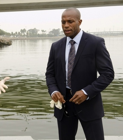 Billy Brown as Det. Mike Anderson
