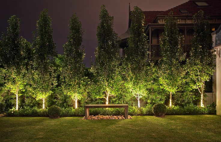Contemporary Australian Garden - Ornamental Pear Trees. Custom Timber Bench.  Bronte, NSW Australia  Anthony Wyer + Associates  http://www.anthonywyer.com