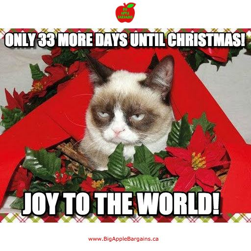 33 DAYS UNTIL CHRISTMAS!!! ✳✳✳ www.BigAppleBargains.ca ✳✳✳