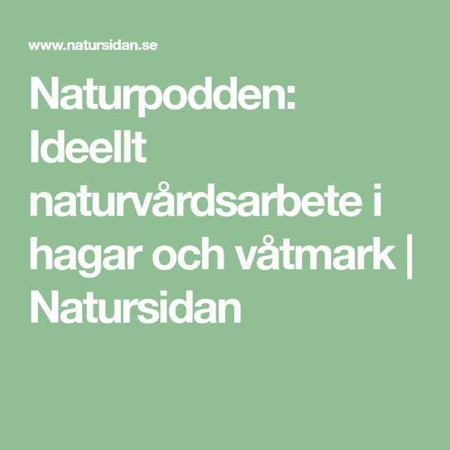 Naturpodden: Ideellt naturvårdsarbete i hagar och våtmark | Natursidan
