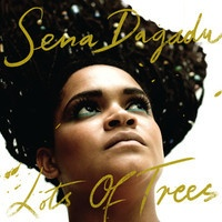 SENA DAGADU-LOTS OF TREES by Irie Maffia Production on SoundCloud