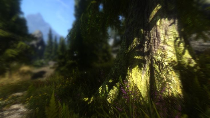Skyrim Beautification Project - Version 3.14 ready for #Download http://www.skyrim-beautification-project.com  HUGE update with the latest #ENB render, graphic improvements and DLC size world expansions #Skyrim looks better than ever. Even better than Bethesda's own Special Edition. #ElderScrolls #Fantasy #Magic #RPG #Gaming #Modding #Tamriel #Art #Adventure #Game #PC