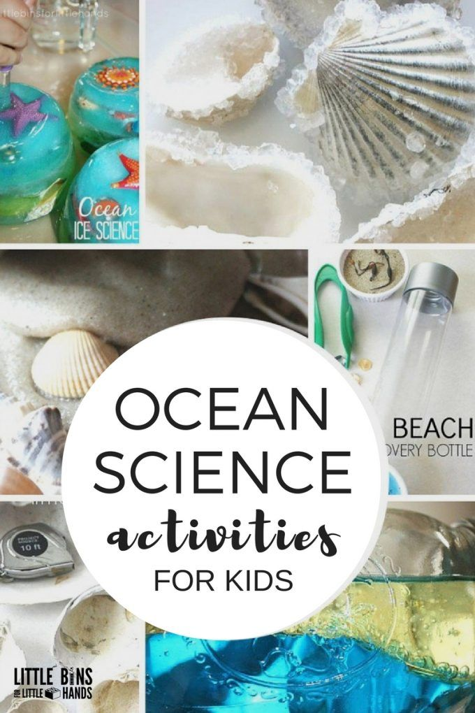 Ocean science activities for kindergarten and preschool ocean theme and beach learning. Make ocean slime, beach discovery bottles, sand slime, wave bottles, measure shells, grow crystal seashells, and more summer kids science ideas.