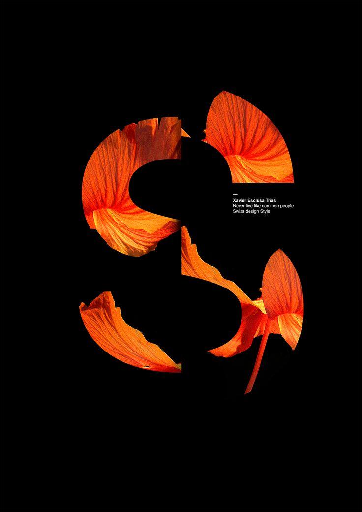 Poster Collection by Xavier Esclusa Trias