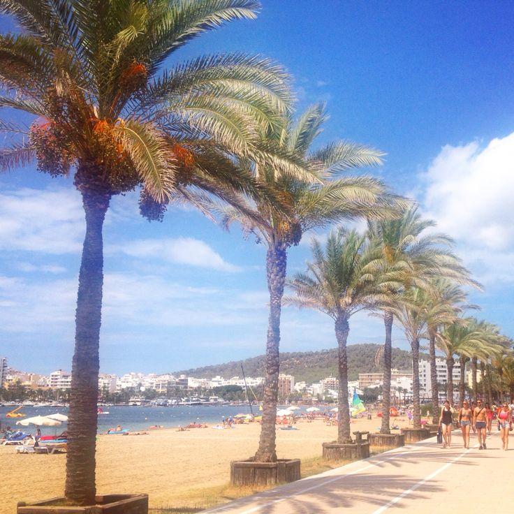 Palm trees San Antonio Ibiza