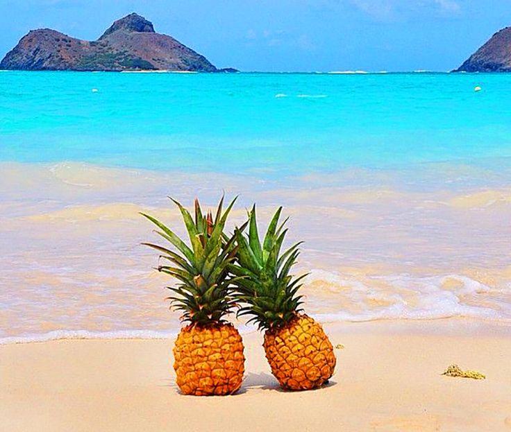 Den 853 Bedste Massage Envy Hawaii Tip Guide Billeder På-9840