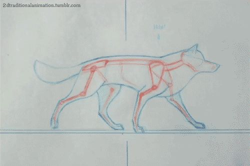 Bloochikin — anatoref: Dogs Animation Referece Row 1, 2...