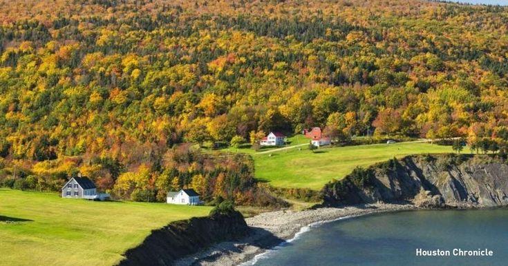 Αυτή η μικρή πόλη στο Καναδά προσφέρει εργασία και δωρεάν γη σε όποιον θα μετακομίσει εκεί - Τι λες τώρα;