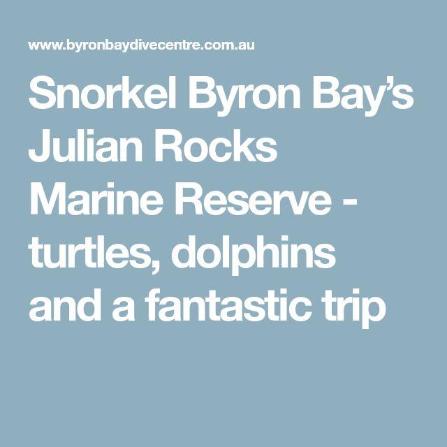 Snorkel Byron Bay's Julian Rocks Marine Reserve - turtles, dolphins and a fantastic trip