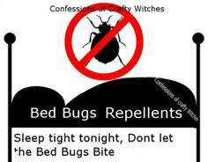 You can kill bed bugs in your linens by popping bedding, draperies and clothing in the dryer. Bed bugs don't like heat. 20 -25 minutes in the dryer. ***Herbal Bed Bug Spray Insecticide***  This spray will act as a good deterrent. The term essential oil is a misnomer. The liquid isn't oil based so don't worry about greasy residue.  Bed Bug Spray Recipe  1 Cup Water 10 drops lavender essential oil 10 drops rosemary essential oil 10 drops eucalyptus essential oil 10 drops essential oil of clove