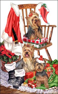 --Yorkshire Terrier - Santa's Chair