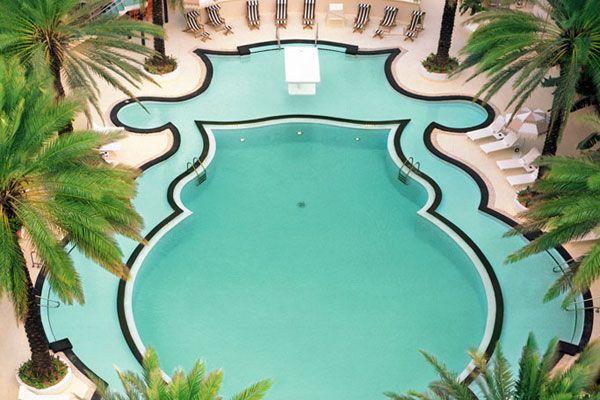 ...: Pools Fun, Fun Pools, Raleigh Hotels, Swim Pools, Nickel Cobalt, Raleigh Pools, Miami Beaches, Places, Pools Design
