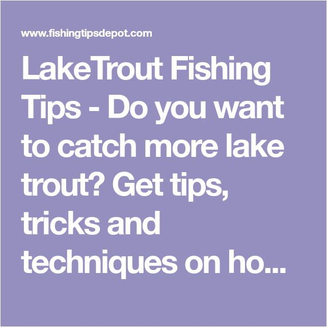 hook setting tips