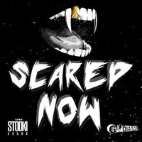 $$$ E'ERYONE SHOULD BE SCARED O' THIS COLLAB #WHATDIRT $$$ Stooki Sound x gLAdiator - Scared Now [FREE DOWNLOAD] by Stooki Sound on SoundCloud