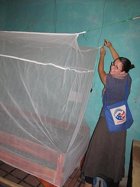 34 best Stomping Out Malaria images on Pinterest Peace corps - peace corps resume