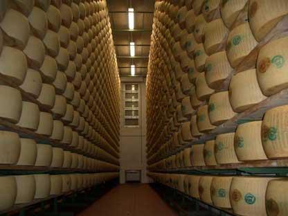 Parmigiano reggiano cheese factory